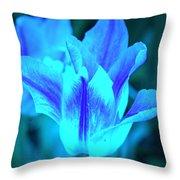 Living Glow Throw Pillow