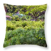 Living Off The Grid In The Waipi'o Valley Throw Pillow