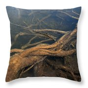 Living Space Throw Pillow