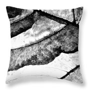 Living Structure IIi Throw Pillow