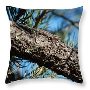 Lizard Bathing In The Sunshine Throw Pillow