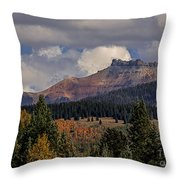 Lizard Head Wilderness Throw Pillow