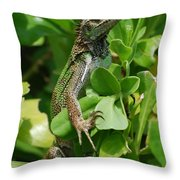 Lizard In Hedge Throw Pillow