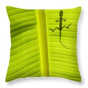 Lizard Leaf Throw Pillow by Tim Gainey