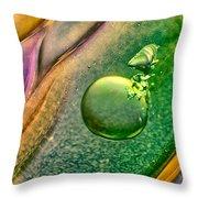 Lizard On A Rock Throw Pillow