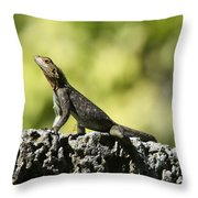 Lizard On The Wall Throw Pillow