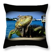 Lizard Sunbathing In Miami Throw Pillow