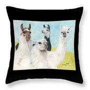 Llama Herd Camelid Farm Ranch Animal Art Throw Pillow