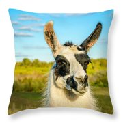 Llama Portrait Throw Pillow