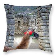 Llama Touring Machu Picchu Throw Pillow