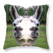 Llama  Fun Head Games Throw Pillow