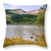 Llyn Cwellyn In Snowdonia National Park Towards M Throw Pillow