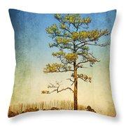 Loblolly Pine Along The Chesapeake Throw Pillow