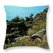 Lobster Cove Head In Gros Morne Np-nl Throw Pillow
