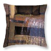 Lock Detail 02 Throw Pillow