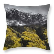 Lofty Ambition Throw Pillow