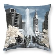 Logan Fountain Throw Pillow