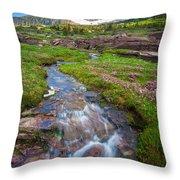 Logan Pass Creek Throw Pillow