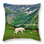 Logan Pass Mountain Goat Throw Pillow