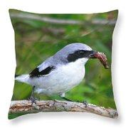 Loggerhead Shrike With Pray Throw Pillow