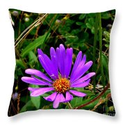 Lone Aster Throw Pillow