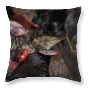 Lone Berry Throw Pillow