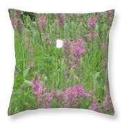 Lone Butterfly Throw Pillow