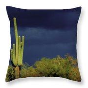 Lone Cactus Sentry Throw Pillow