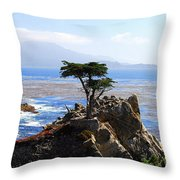 Lone Cypress Tree In Monterey In California Throw Pillow