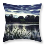 Lone Duck At Dusk Throw Pillow