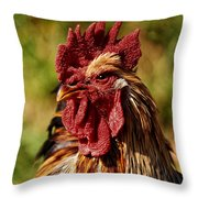 Lone Farm Rooster Portrait Throw Pillow