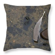 Lone Feather Throw Pillow