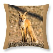 Lone Fox Throw Pillow