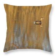 Lone Grebe Throw Pillow