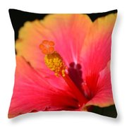 Lone Hibiscus Throw Pillow