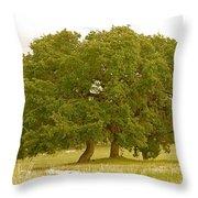 Lone Oaks Throw Pillow