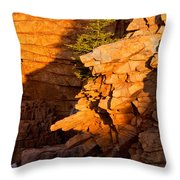 Lone Pine 2621 Throw Pillow