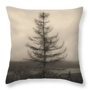 Lone Pine And The Bras D'or Throw Pillow