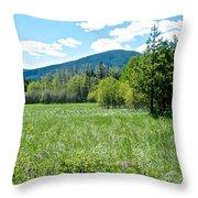 Lone Pine Prairie South Of Polebridge In Glacier Np- Mt  Throw Pillow