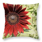 Lone Red Sunflower Throw Pillow by Kerri Mortenson