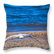 Lone Seagull Throw Pillow