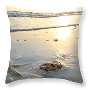 Lone Star And Friend Throw Pillow