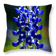 Lone Star Bluebonnet Throw Pillow