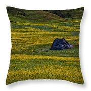 Lone Stone Throw Pillow by Garry Gay