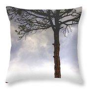 Lone Tree 11351 Throw Pillow