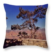 Lone Tree Along The South Rim Throw Pillow