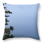 Lone Tree By The Water In Acadia National Park Throw Pillow