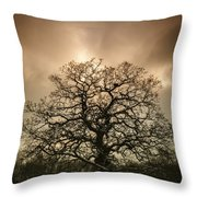 Lone Tree Throw Pillow by Amanda Elwell
