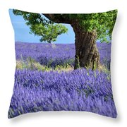 Lone Tree In Lavender Throw Pillow