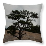 Lone Tree In Stone Mountain State Park North Carolina Throw Pillow